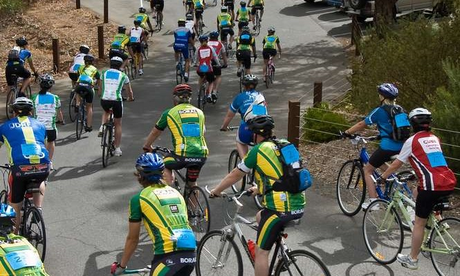 "JDRF ""Ride to Cure Diabetes"""
